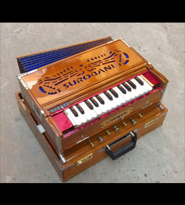 Harmonium Dealers in France